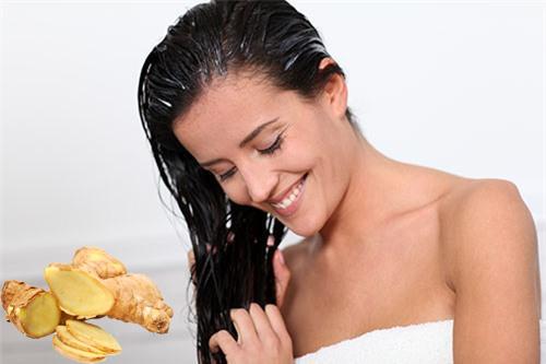 Kết quả hình ảnh cho bột gừng giúp tóc mọc nhanh